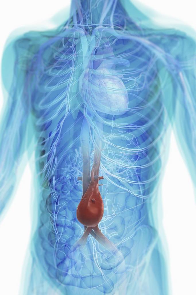 A prosztatitis a belekben kapcsolódik Mióta több prosztatitis beteg